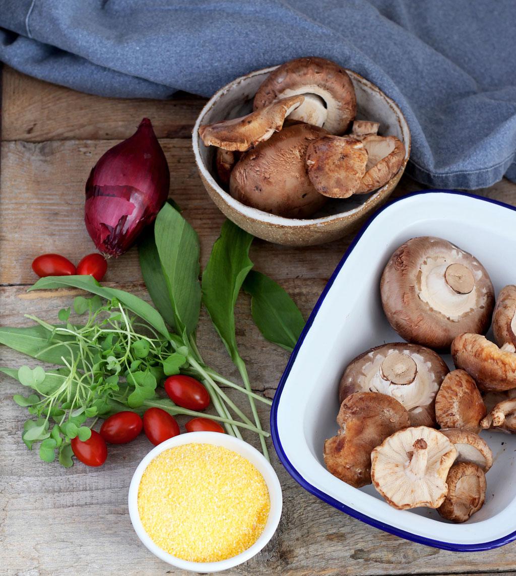 Baked-Mushroom-Polenta8